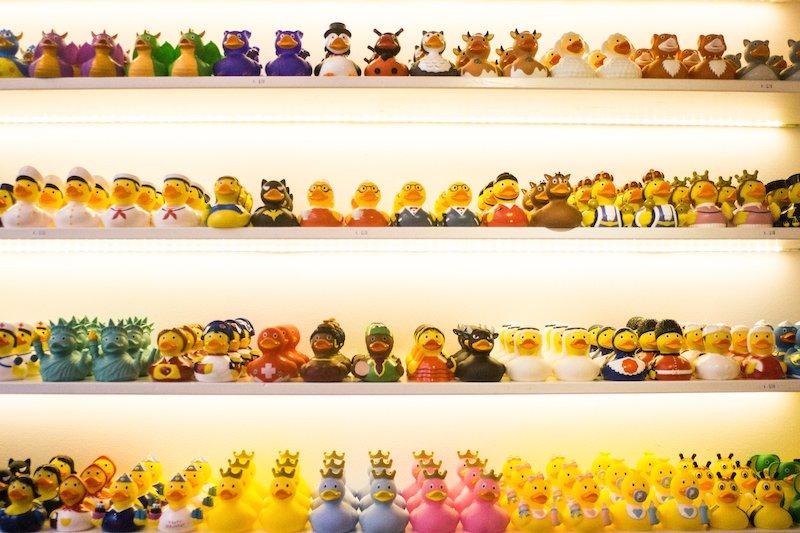 Amsterdam Duck Store, lo strano negozio di papere