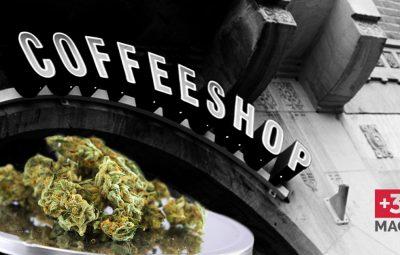 Olanda e coffeeshop