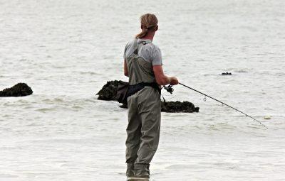 Fishing, pesca